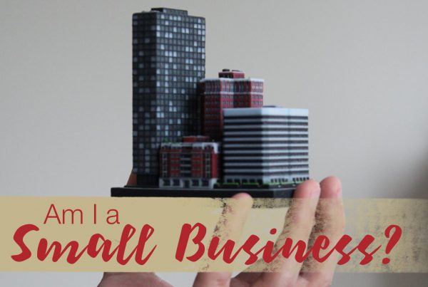 Am I a Small Business?
